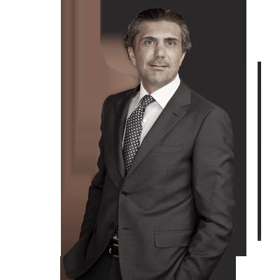 Avvocato Luca Palmieri